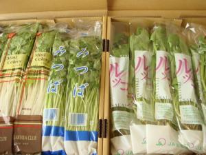 0312お野菜