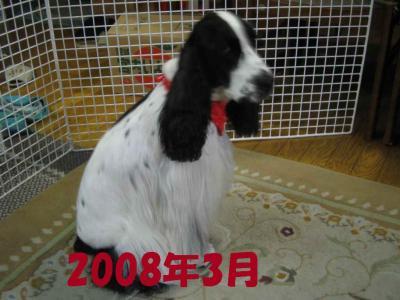 2008-1-25-3-1.jpg