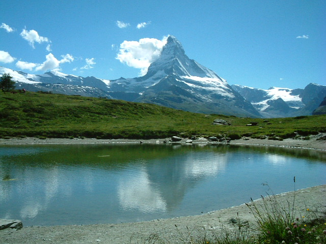 スイス40
