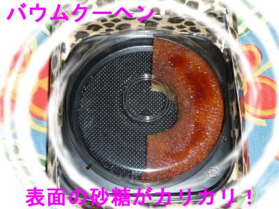 P1070447-e.jpg