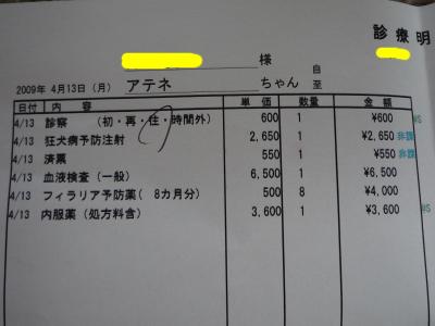 P1070533-e.jpg