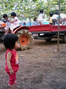 トラクター2