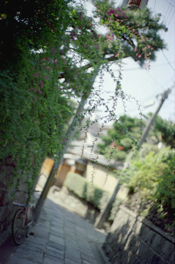 blog0153.jpg