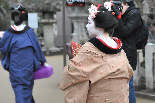 横顔/舞妓