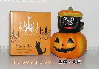 オレンジと黒猫
