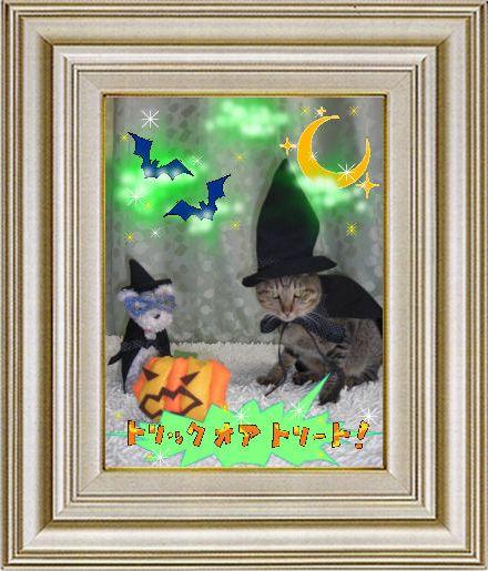 ねこ 猫 ハロウィン祭り 04番