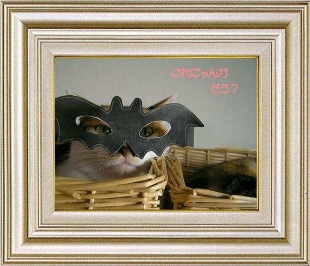 ねこ 猫 ハロウィン祭り 09番