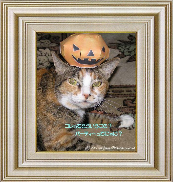 ねこ 猫 ハロウィン祭り 13番