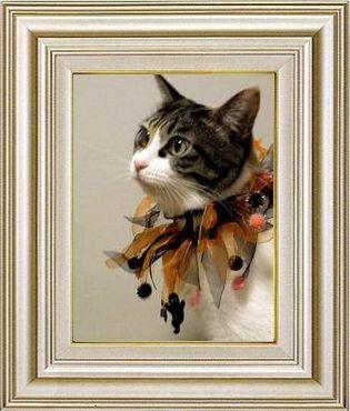 ねこ 猫 ハロウィン祭り 15番