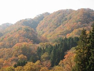 男体山東面の紅葉