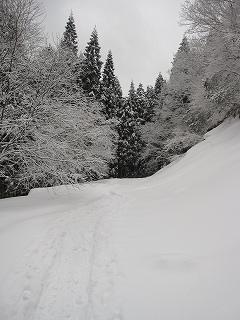 2012025-26生杉 024