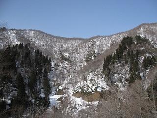 20120311生杉 026