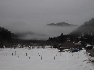 20120318生杉 016