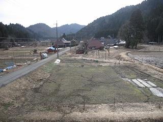 20120415生杉 021