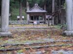 強風の影響(大宮神社)