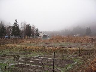 水が溜まった畑
