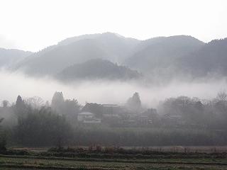 朝靄の大原