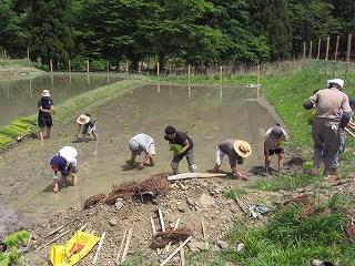 山水人の田植え