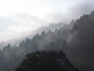 生杉 朝の様子