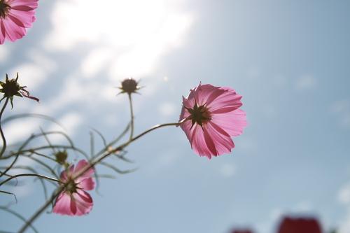 20081012_14.jpg