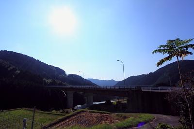 20111103_12.jpg