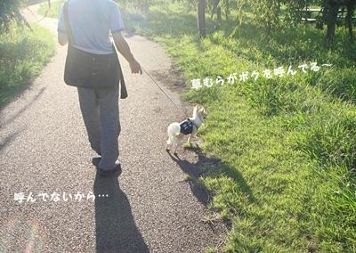 815011-crop.jpg