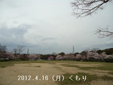 DSC04228.jpg