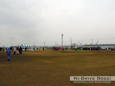 20120304izumiootu2.jpg