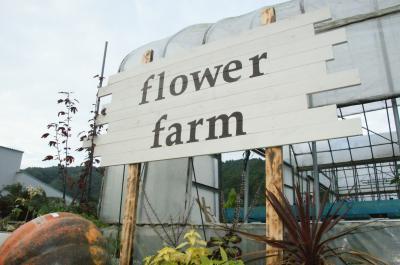Flower Farm-9