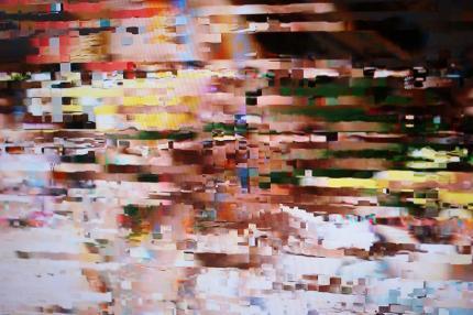 DSC04592_convert_20090828005109.jpg