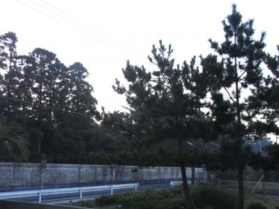sotoboの朝-5