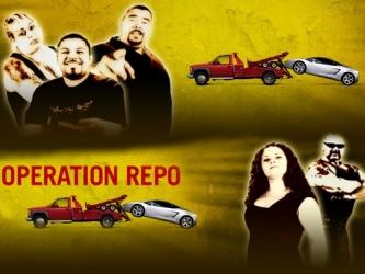 operation_repo-show.jpg