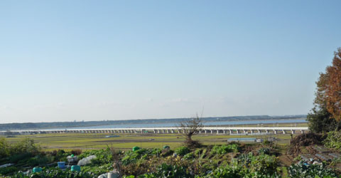 Narita004.jpg
