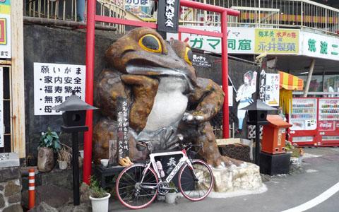 Tsukuba006.jpg