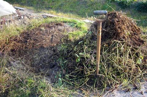 サツマイモの茎葉で堆肥、切り返し