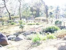 手入れの行き届いた日本庭園が広がっています