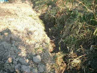 排水を良くするために、溝をつけました