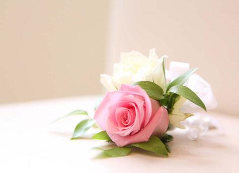 薔薇のコサージュ プルメリ