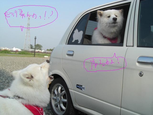 サリーチャンとマリア車にて.jpg