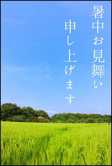 2008_08120072kk.jpg