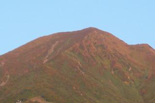 10月4日 紅葉