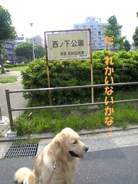 02西の下公園01.jpg