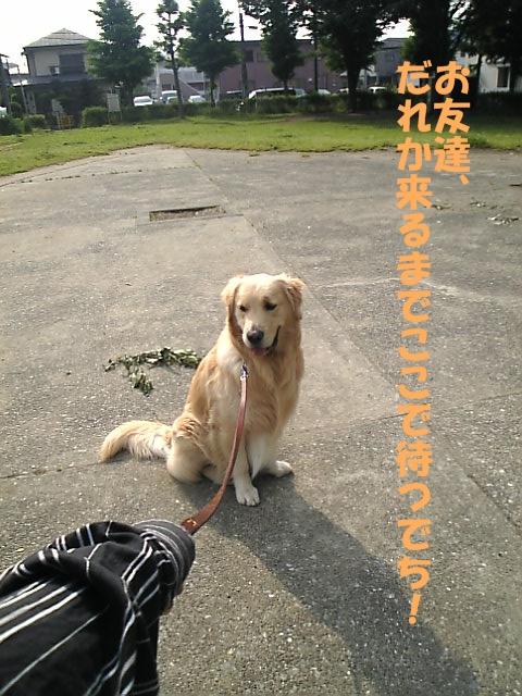 07広田公園02.jpg