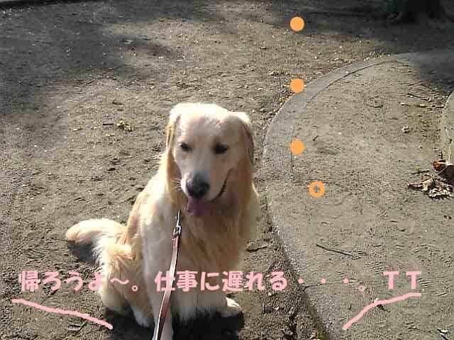 10広田公園05.jpg