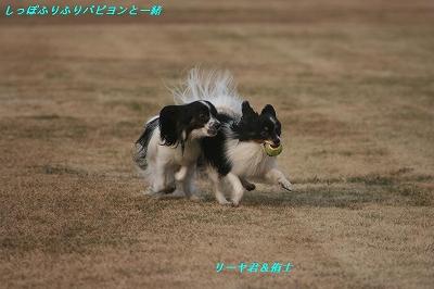 リーヤ君VS侑士 ①