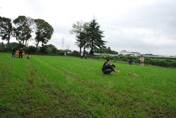 2008110701.jpg