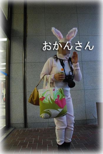 2008111814.jpg