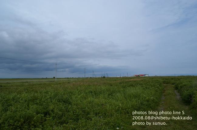 DSC02303.jpg