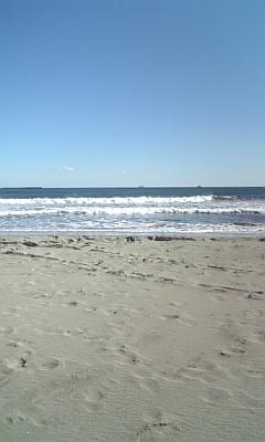 大会やった海。