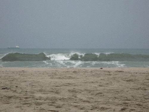 こんな感じの波。